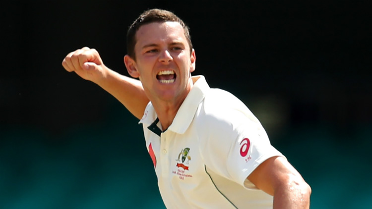The unsung hero of Australia Josh Hazlewood